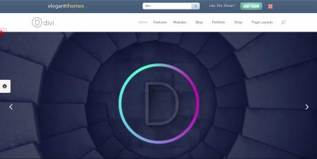 DIVI Theme - Home page screenshot