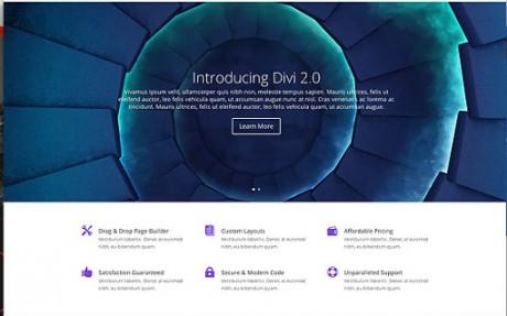 WordPress-Review-Theme-Divi