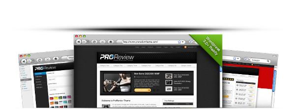 WordPress pro review theme