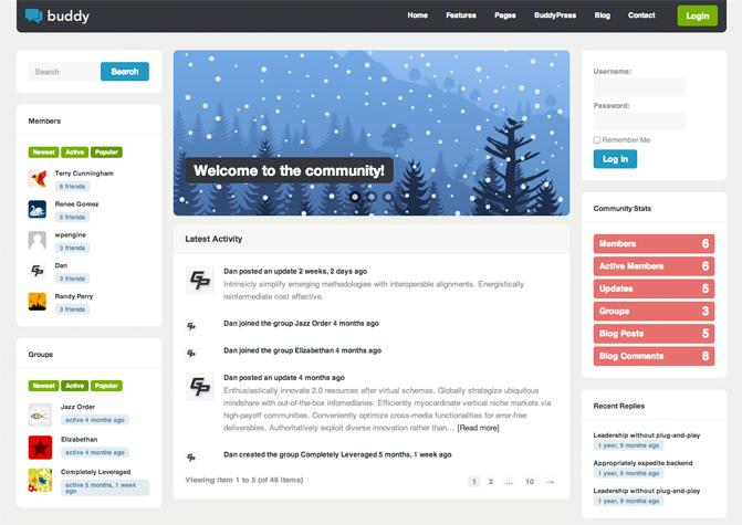 Buddy BuddyPress Theme