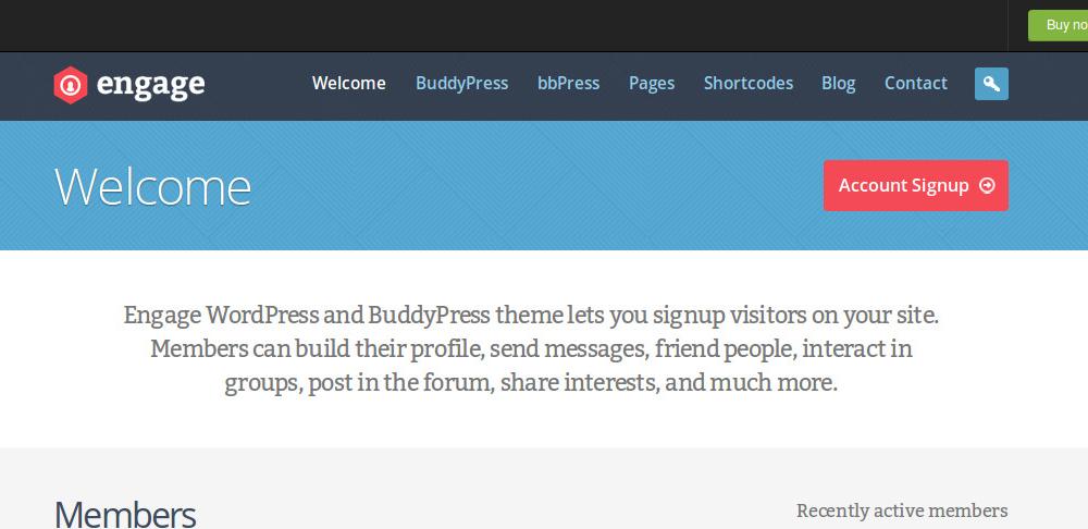 Great BuddyPress WordPress Themes