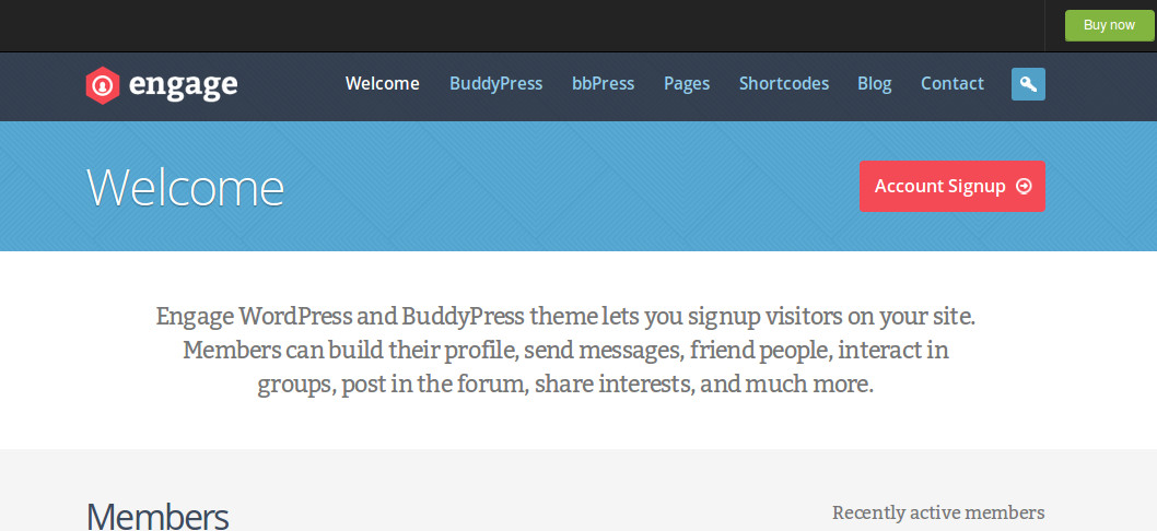 BuddyPress WordPress Themes | Top 5
