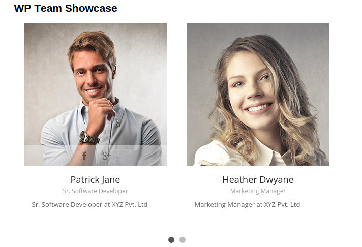 WordPress Team Showcase demo