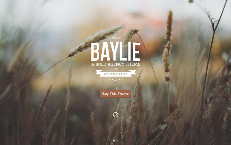 Baylie-WordPress-Theme1