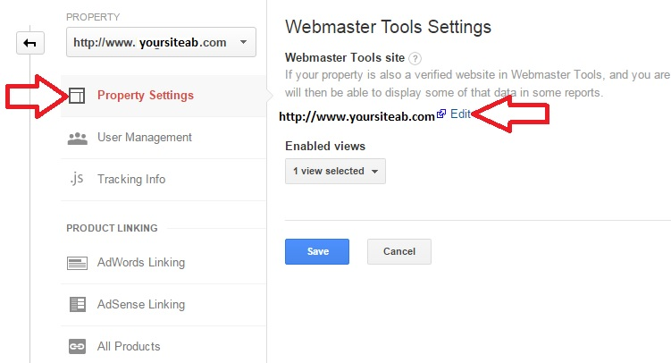 Webmaster Tools Settings