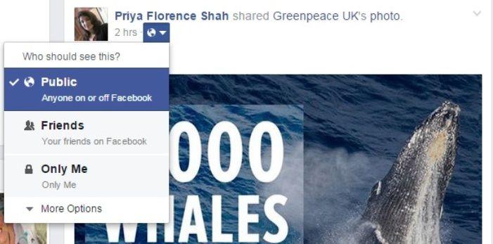 Facebook Public Updates