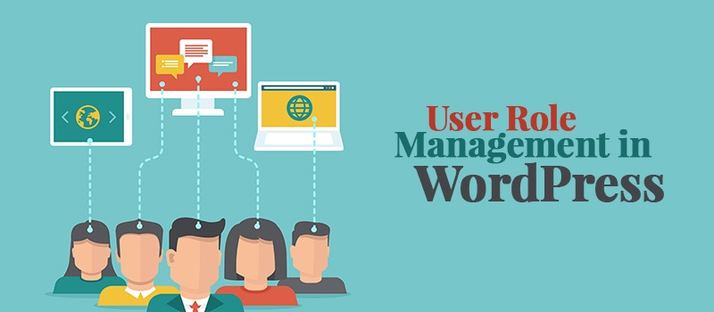 user role management in wordpress