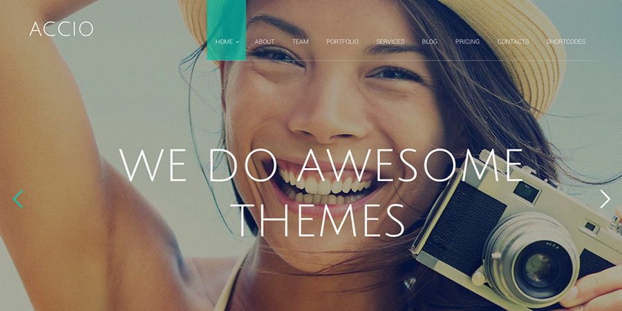 Best One Page WordPress Themes | Accio