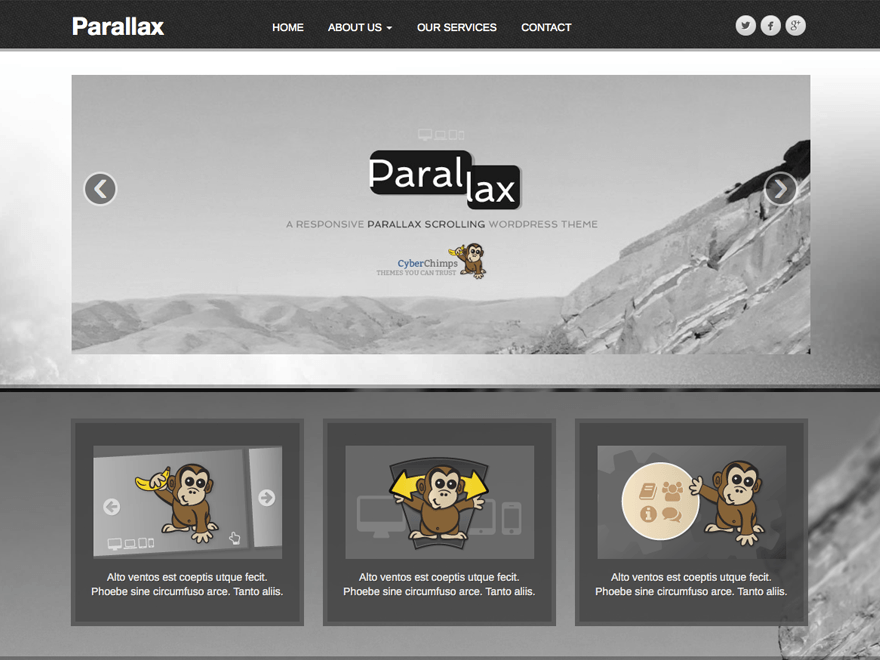 wordpress themes for effective content marketing - parallax