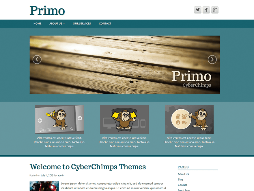 wordpress themes for effective content marketing - primo lite