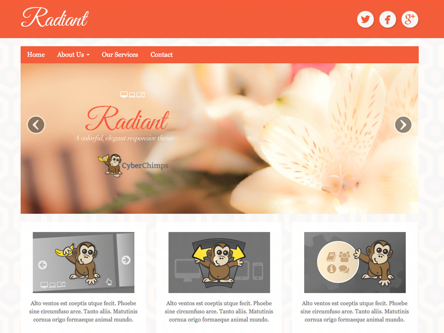 wordpress themes for effective content marketing - radiant free