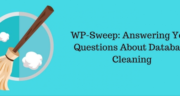 How to Clean up WordPress database
