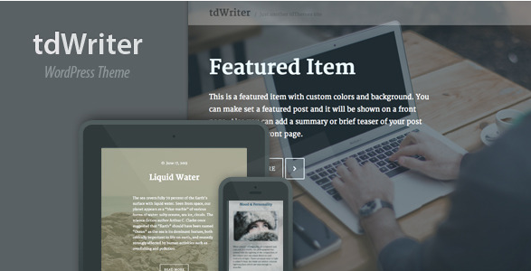best personal blog wordpress themes - tdwriter