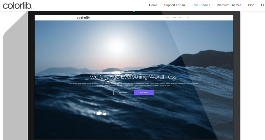 best free responsive WordPress themes - Shapely