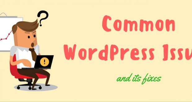 common wordpress issues