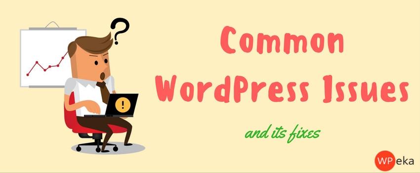 common wordpress issues