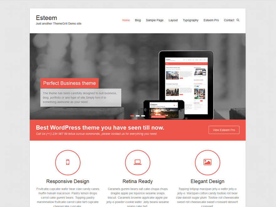 best free responsive WordPress themes - esteem