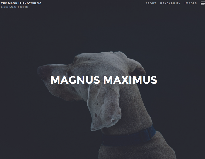 magnus free wordpress theme