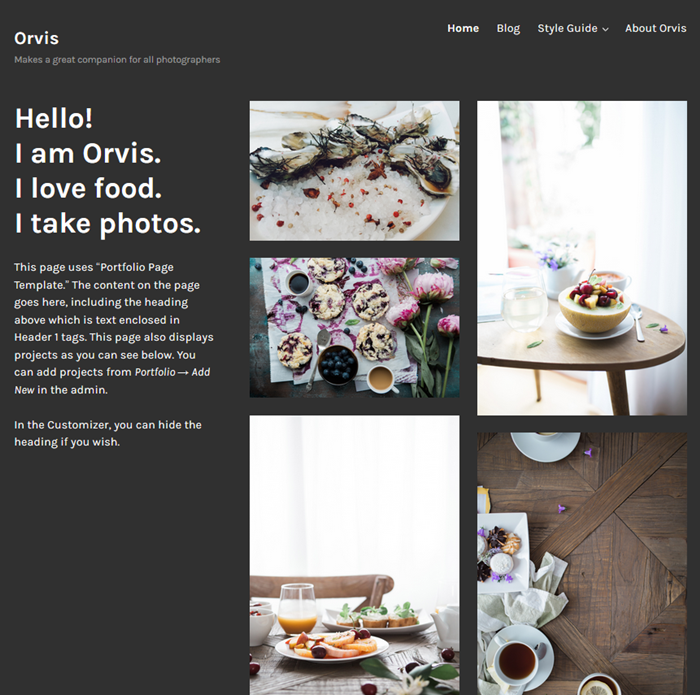 orvis wordpress theme for artists