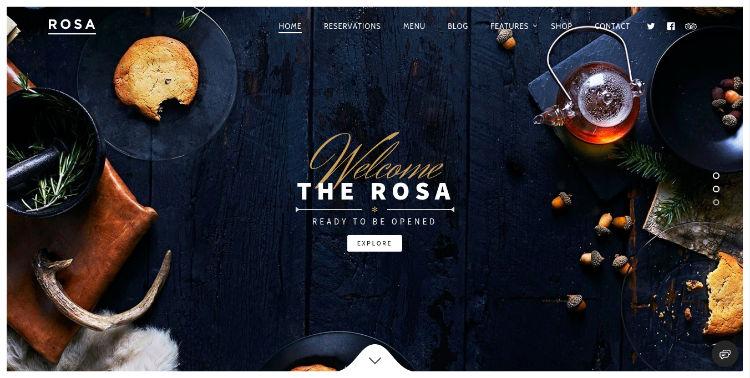 rosa-fast-wordpress-theme
