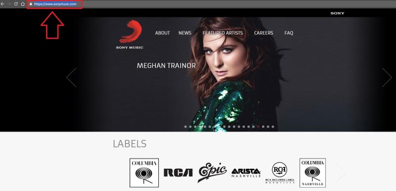 copy website url
