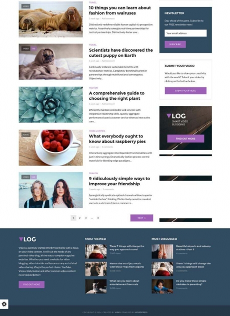 Vlog WordPress Theme Design