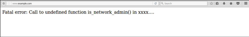 Fatal error undefined function is_network_admin()