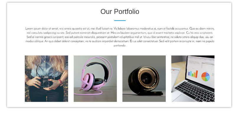 Portfolio Section- One Page WordPress Theme