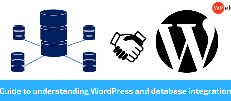 Guide to understanding WordPress and database integration