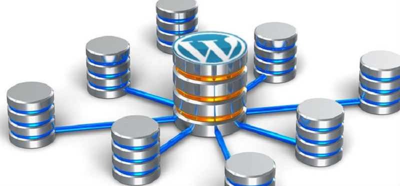WordPress-and-database-integration