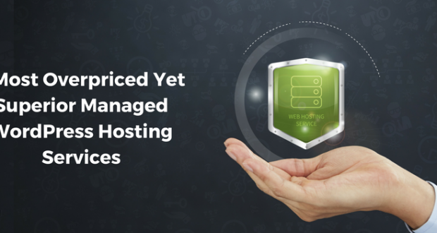 3 Most Overpriced Yet Superior Managed WordPress Hosting Services