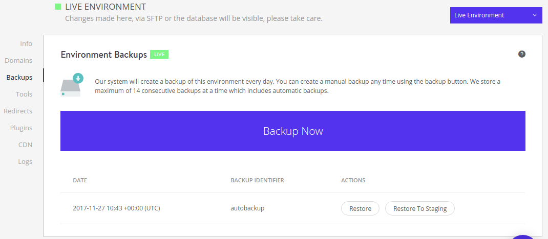 Kinsta backup website