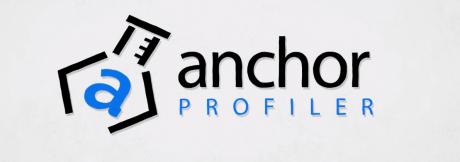 Anchorprofiler WordPress SEO Tools