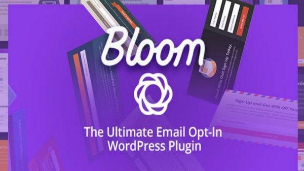 Bloom WordPress plugin for newsletter