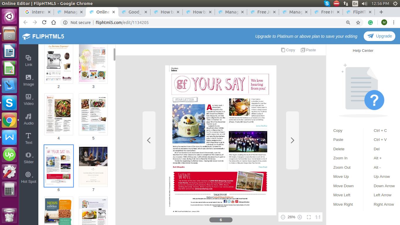 digital magazine publisher